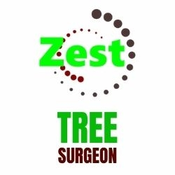 Zest Tree Surgeon logo
