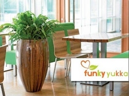 https://www.funkyyukka.co.uk website