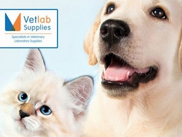 https://vetlabsupplies.co.uk/ website
