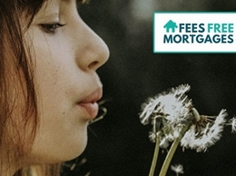 https://feesfreemortgages.co.uk/ website