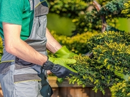 https://www.gardeneruk.co.uk/gardener-york.html website