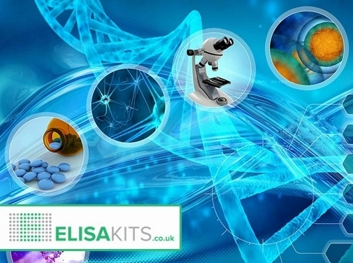 http://www.elisakits.co.uk/ website