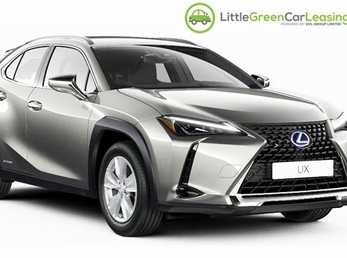 https://www.littlegreencarleasing.com/ website