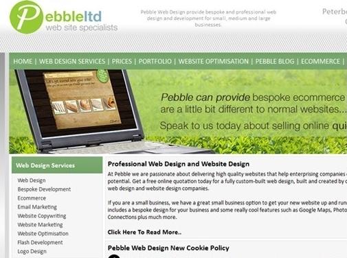 https://www.pebbleltd.co.uk/ website