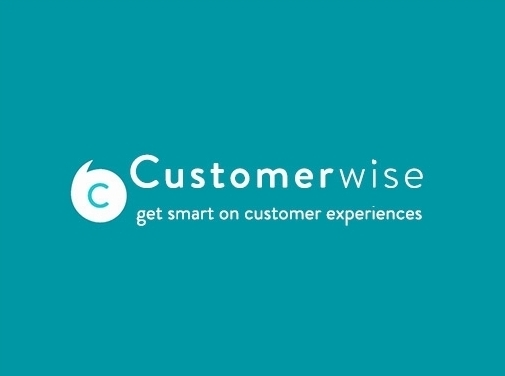 https://customerwise.co.uk/ website