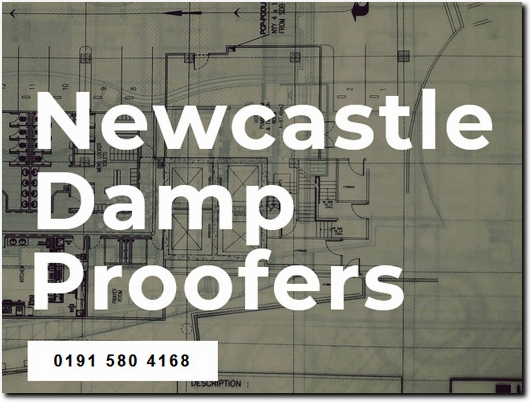 http://www.newcastledampproofers.co.uk/ website