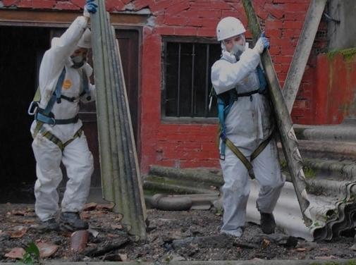 http://www.asbestosremovalsinlondon.co.uk/ website