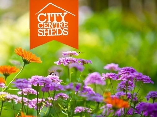 https://www.citycentresheds.co.uk website